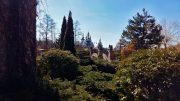 Парк в Буках, фото - 11