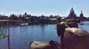 Парк в Буках, фото - 16